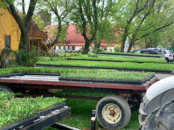 Farmer John Writes: Important Update about Your First Delivery