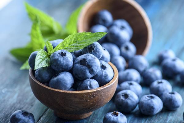 CSA Week 5: NEW! bread & blueberry pre-orders