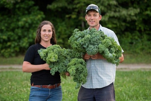 Sign up for Veggie Boxes Open Now. Taste the difference with delicious, vibrant veggies from Bluebird Farm!