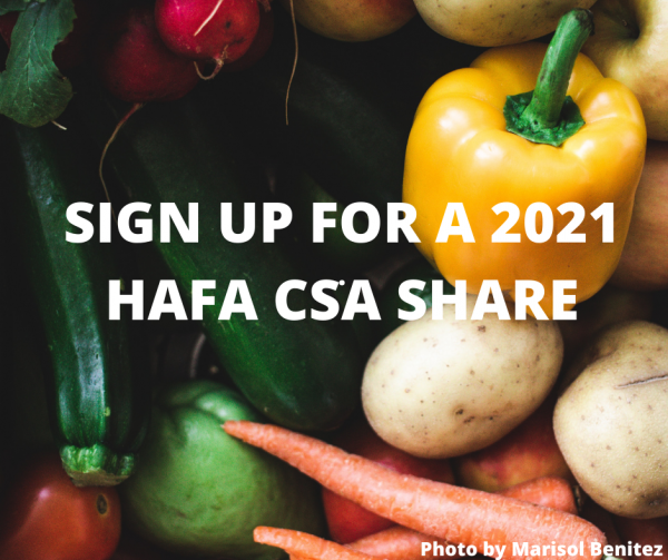 Sign Up for a 2021 CSA Share with Us!
