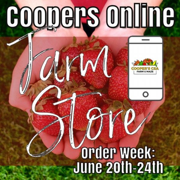 Coopers CSA Online FarmStore- Order week June 20th-24th