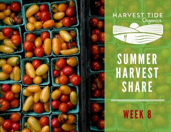 Summer Harvest Share - Week 8