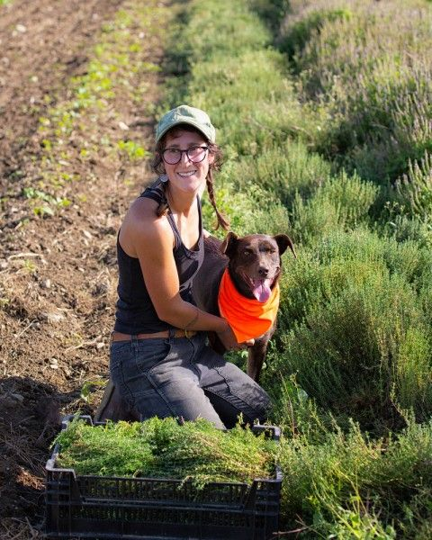 Farm Happenings 10/25/21: Farm & Butcher Boxes for 2022 / Update from Seven Moon Farms