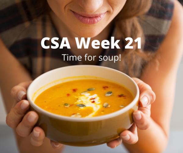 CSA Week 21 October 27-28
